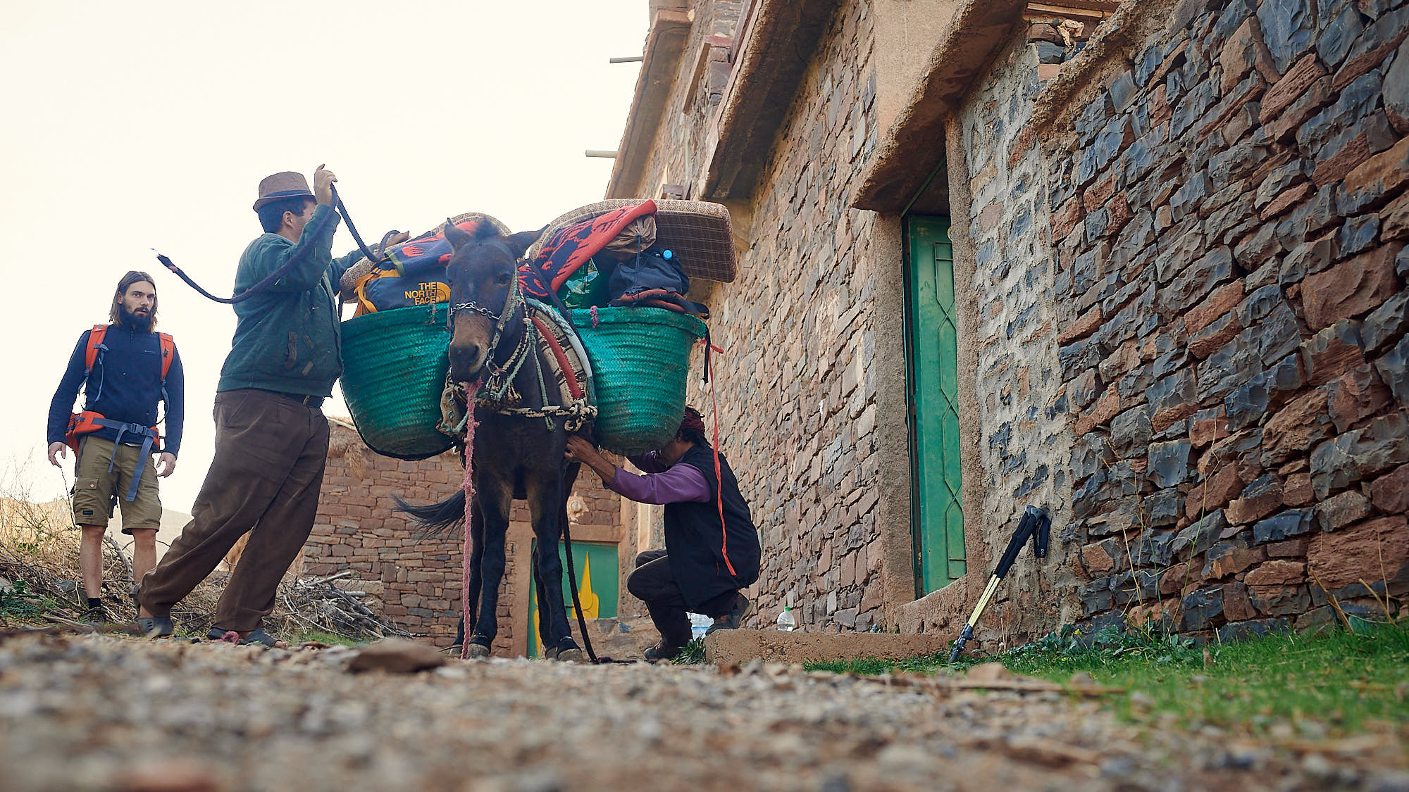 Loading a mule with camping supplies in Morocco